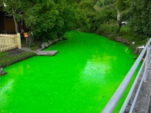 Farbversuch um unterirtische Wasserläufe zu erkunden: Der Mühlbach